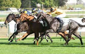 gagner aux courses de chevaux