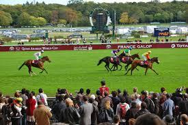 pronostics gagner courses chevaux