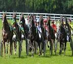 jockey course