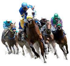 cheval de courses en vitesse